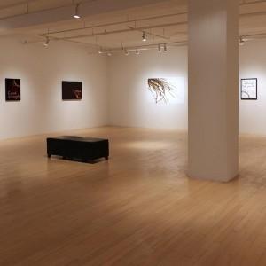 Bling, Galerie Dominique Bouffard, 2015