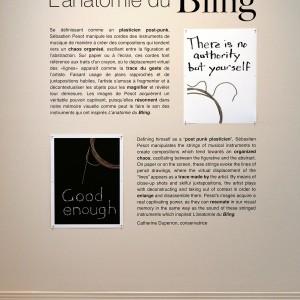 L-anatomie-du-bling-texte