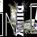 Noir Floral 09, 2017, Impression numérique de type C sur papier archive   51 x 38 cm (20 x 15 pouces)  Édition de 3, 1 A/P